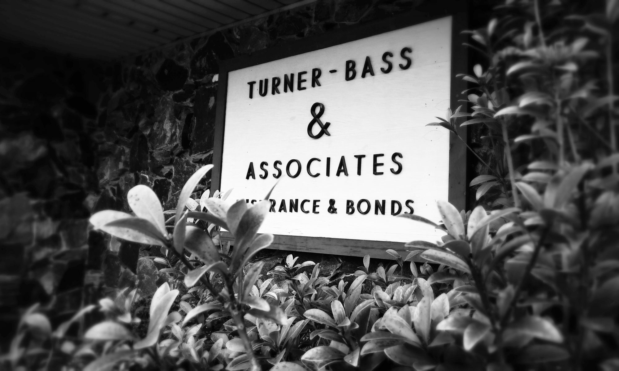 Turner Bass and Associates